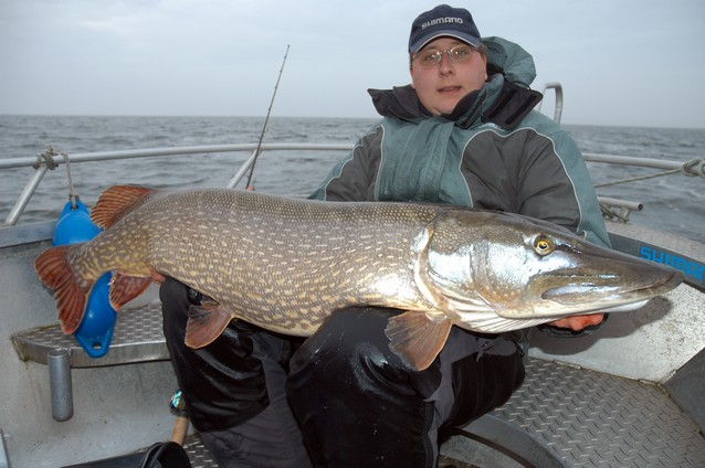 Big Fishes of the World: PIKE NORTHERN (Esox lucius)