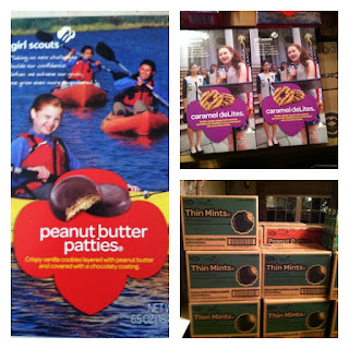 How to Earn the Daisy Girl Scout Count It Up Leaf-Complete Meeting Plan