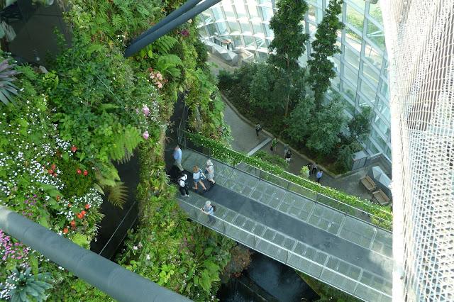 Ogród pod szkłem