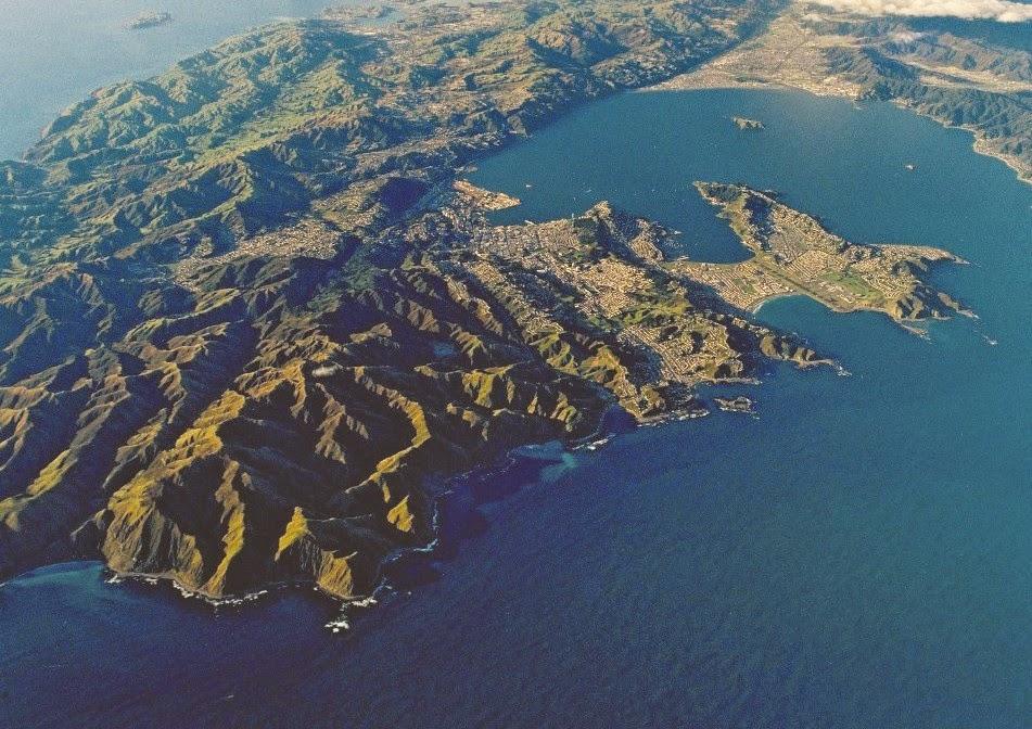 Zona de Wellington