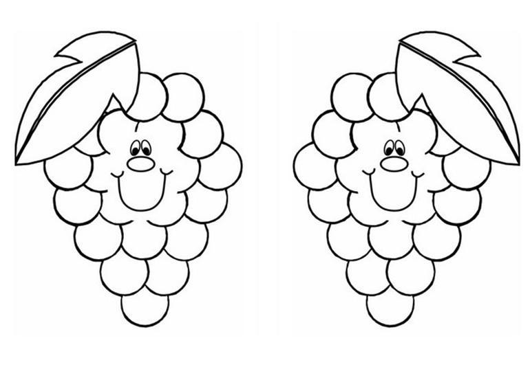 desenhos de uva molde de uva moldes de uvas riscos de uvas para