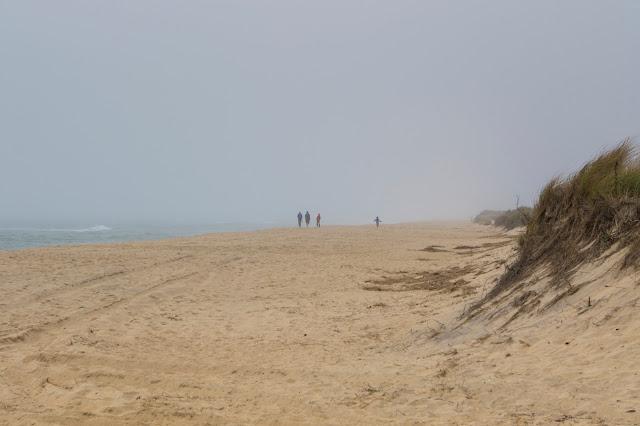 Katama beach e South beach-Martha's Vineyard