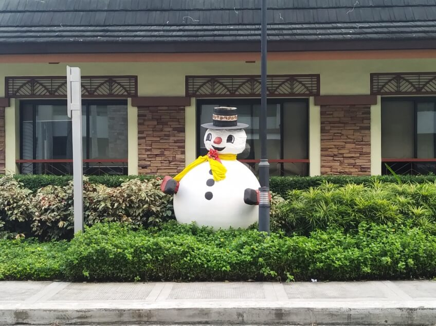 Xiaomi Mi 8 Lite Main Camera Sample - Day, 2x Zoom, Snowman