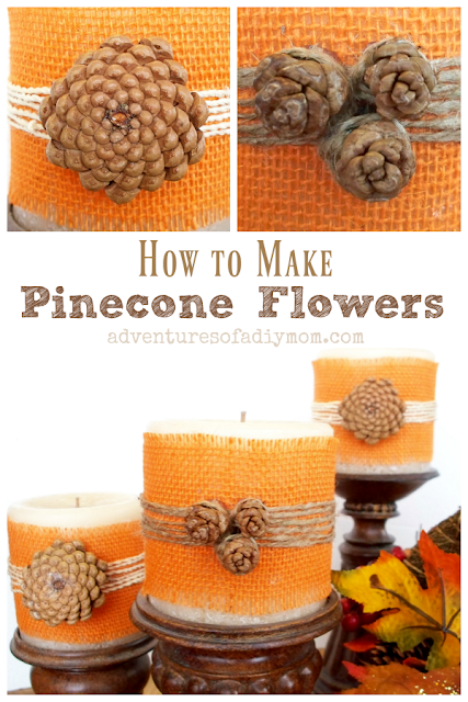 Learn to make flowers out of pine cones.