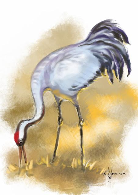 Crane bird painting by Artmagenta
