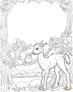 Baby Llama With Owl At Forest Coloring Sheets Picture