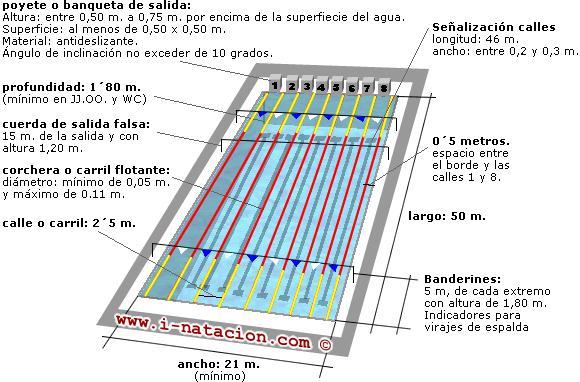 Natacin CPEL Dimensiones de una piscina olmpica