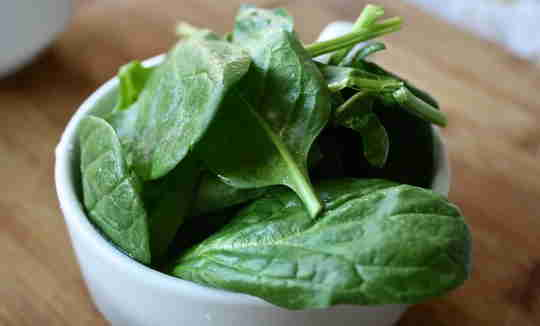 15 Best Food increases the blood in the body Rapidly