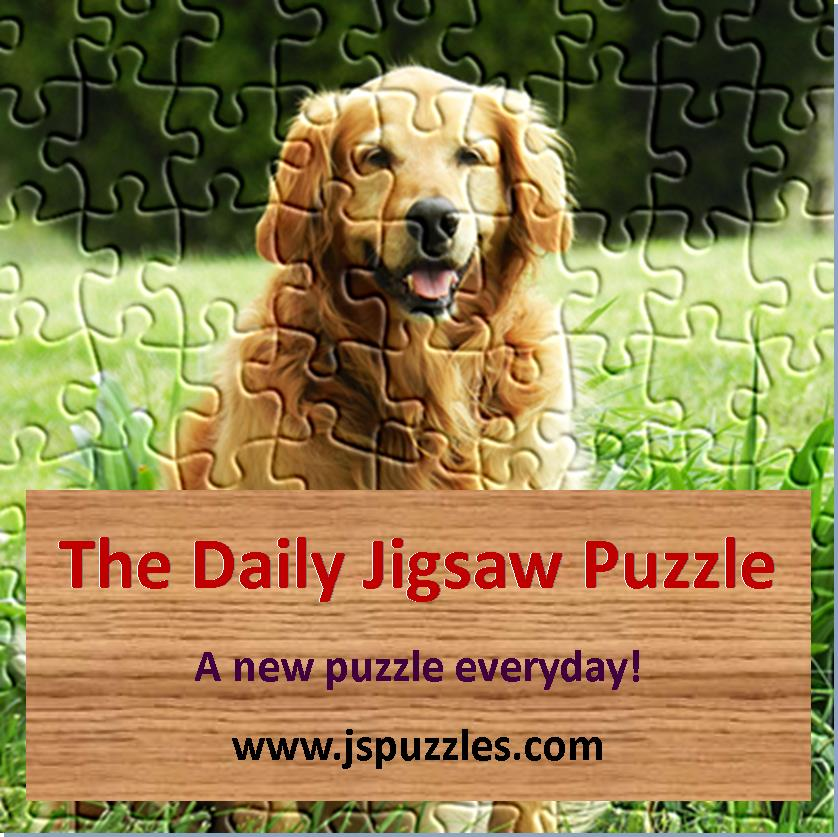 The Daily Jigsaw Puzzle