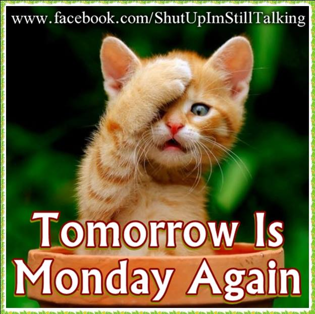 Again Monday Is Here By Tomorrow :)