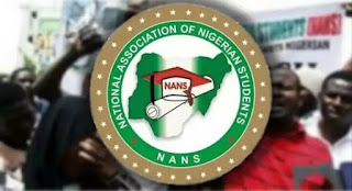 ASUU Strike: NANS Reveals What Will Happen If Academic Activities Don't Resume Before Elections