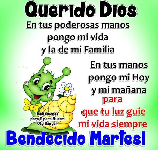 QUERIDO DIOS  En tus poderosas manos  pongo mi vida y la de mi Familia. En tus manos pongo mi Hoy y mi mañana para que tu luz guíe mi vida siempre.  BENDECIDO MARTES