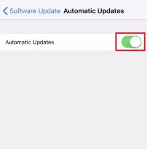 كيفية تمكين التحديثات التلقائية للنظام على iOS 12