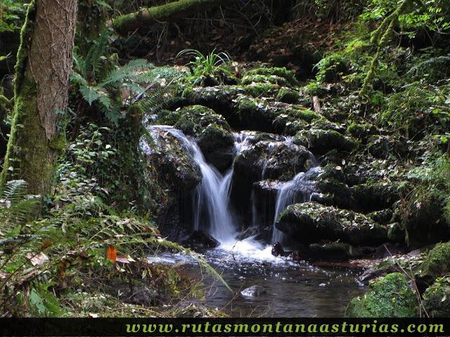 Ruta de los Molinos del Rio Profundo: Cascada de agua