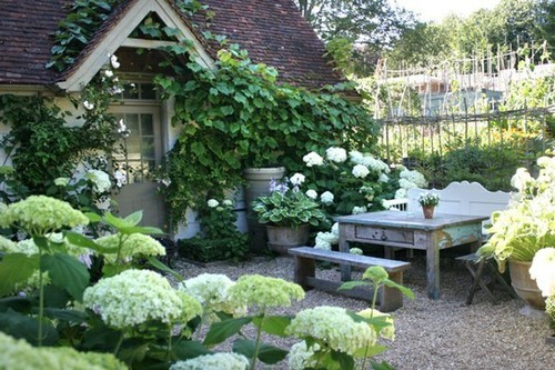 Cottage With A Great Garden Content In A Cottage