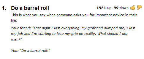 The meaning of Do a barrel roll  Your BLog Name