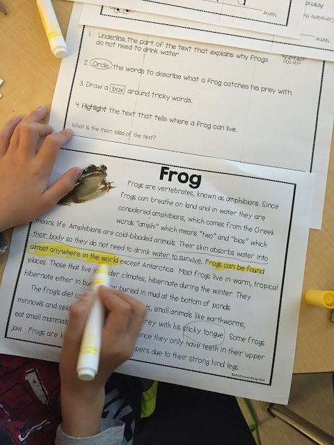 Spring Close Read on tulips,rabbits, earthworms, rain, bees, and frogs.3 leveled texts per topic, vocab word cards, defintion, and picture cards, and reading response pages.