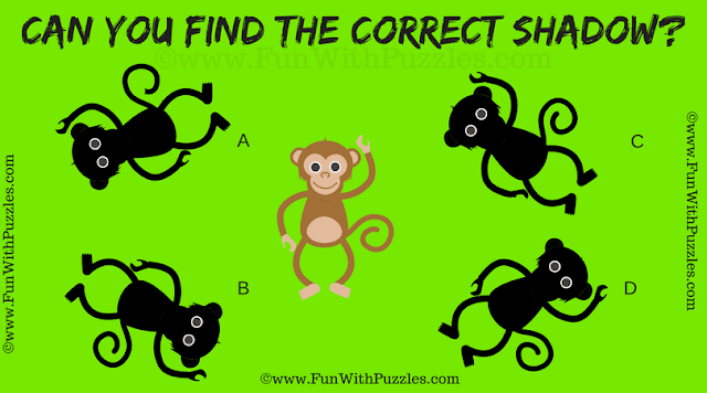 It is an easy shadow picture riddles for kids in which one has to find the correct shadow of the given puzzle image