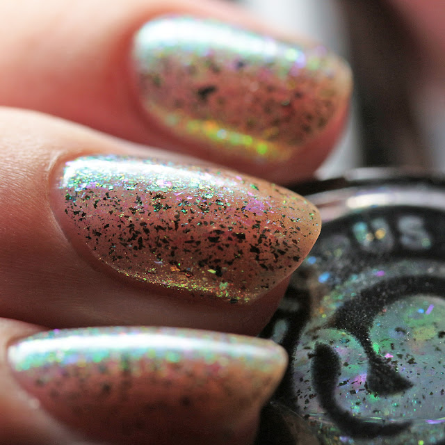 Octopus Party Nail Lacquer Run This Bayou