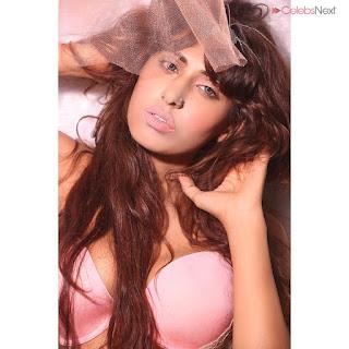 Heena Harwani Spicy Indian Bikini Model   .xyz Exclusive 009.jpg