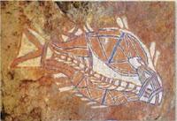Barramundi Fish