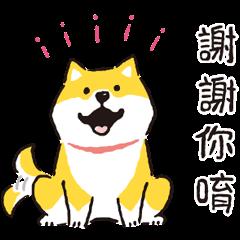 Shibanban Animated Stickers