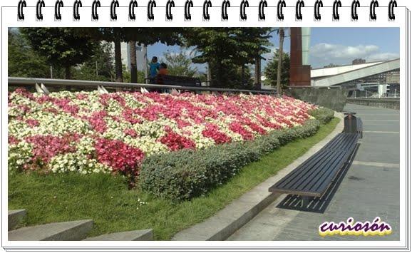 Bilbao jard n 2011 curios n for Jardines 4 bilbao