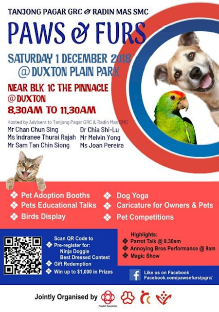 Event poster Paws & Fur