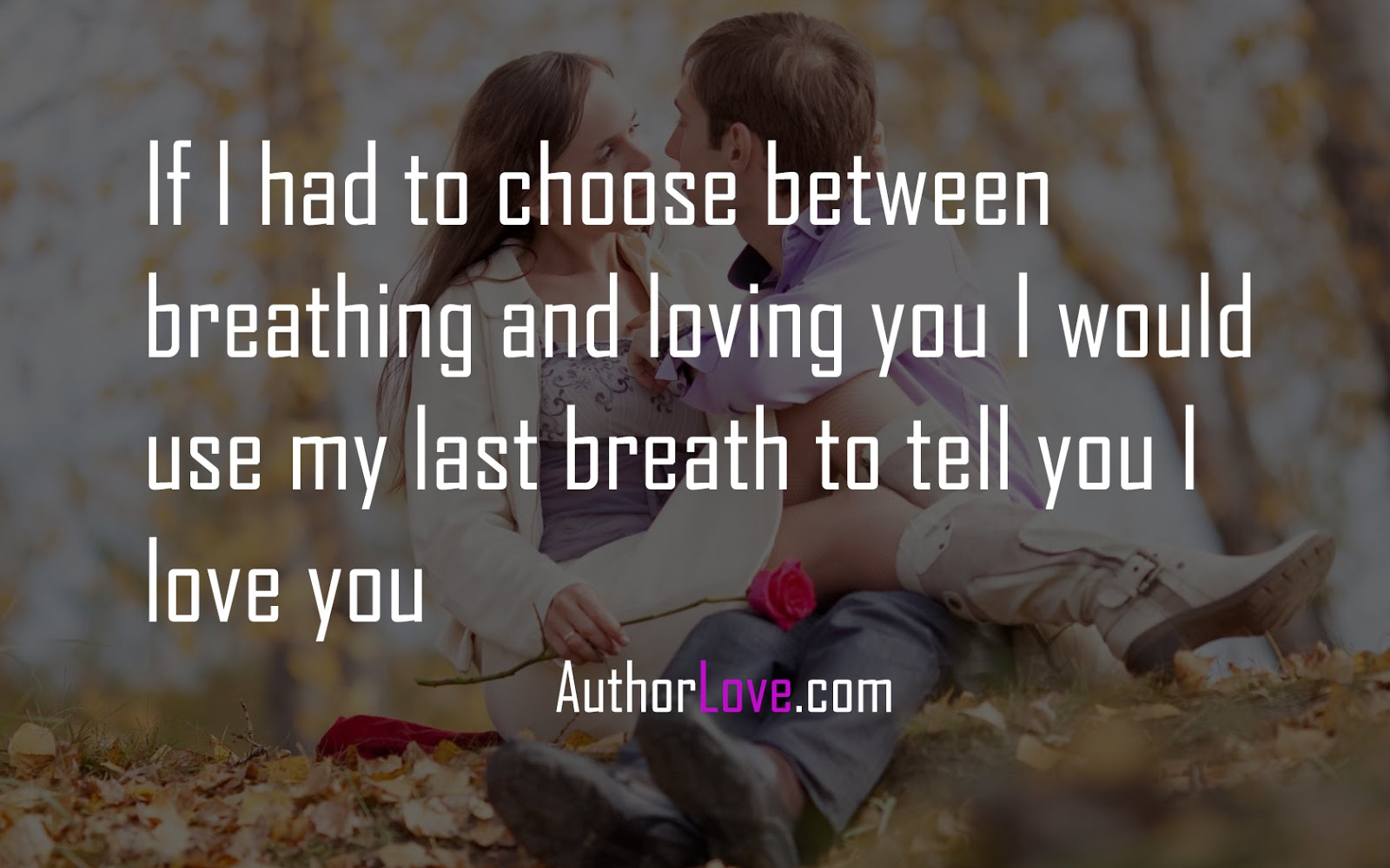 I Love You Quote If I Had To Choose Between Breathing And Loving You  Love Quotes