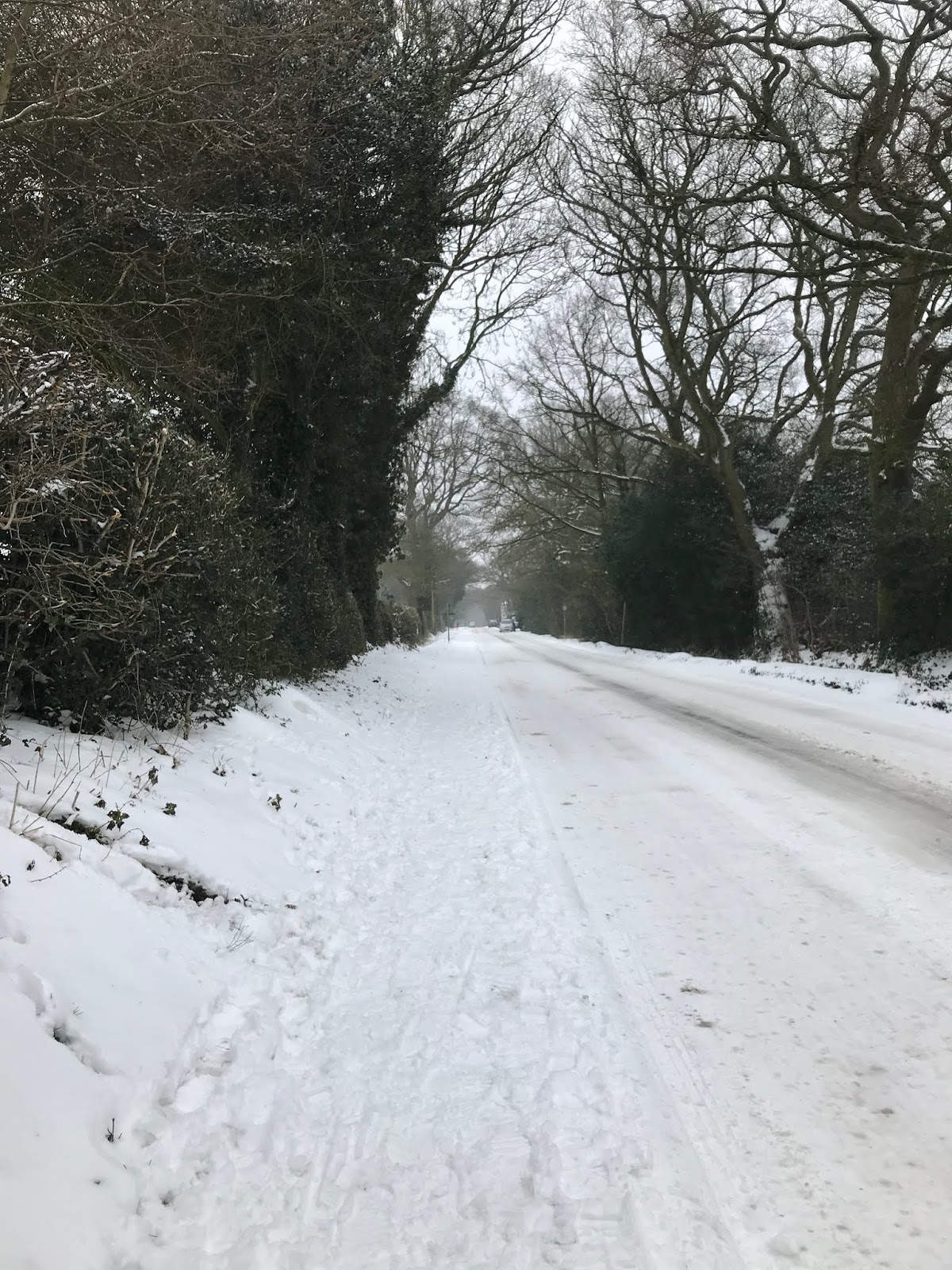 Snow covered Packhorse Lane