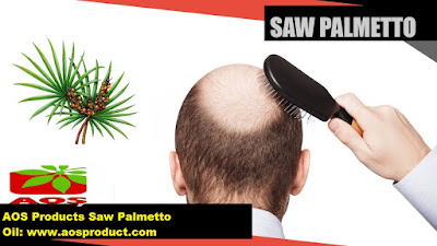 Essential Oils: Saw Palmetto Oil