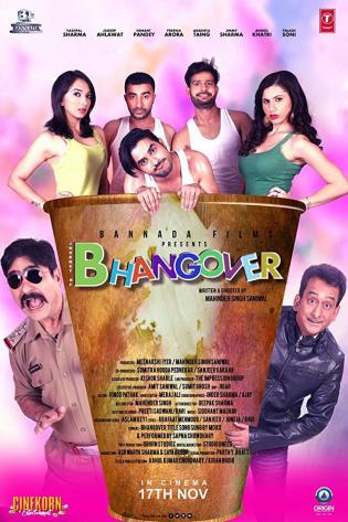 Journey of Bhangover 2018 Hindi Movie Free Download HDRip
