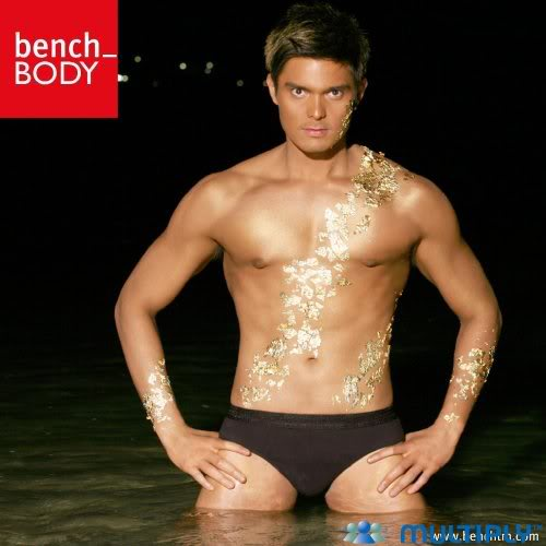 BlueSago: What Do You Think About Dingdong Dantes in ...