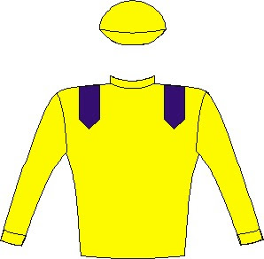 Do It Again - Silks - Owner: Messrs N Jonsson, B Kantor & W J C Mitchell - Colours: Yellow, royal blue epaulettes, yellow sleeves and cap