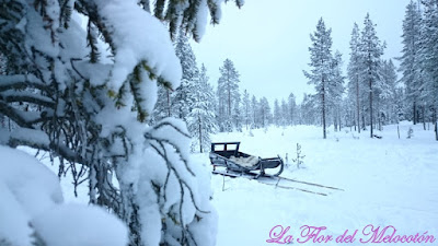 Salla, Laponia, Navidad 2016