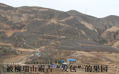 投诉:陕西绥德县柳家庄村支书村主任为什么被刑事拘留?