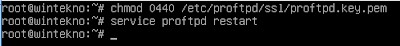 Restart FTPS