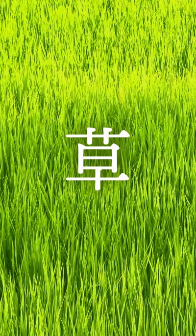 Green grass [jp]