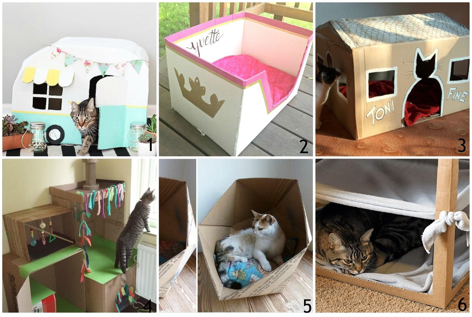 Cuccia Gatto Fai Da Te come fare cucce con i cartoni | donneinpink magazine