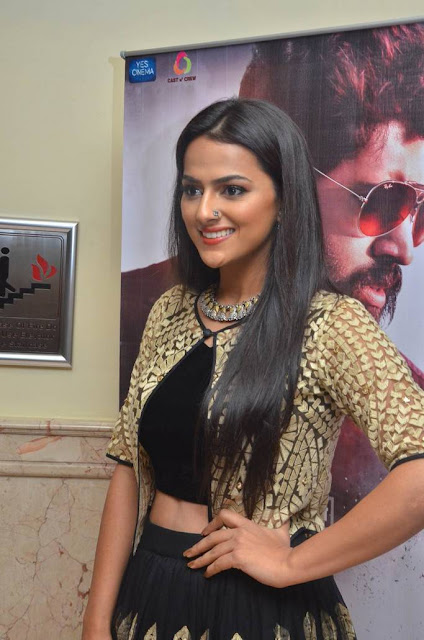 Shraddha Srinath Stills At Richie Audio Launch