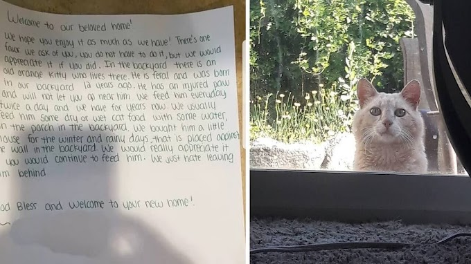 THIS WOMAN MOVES INTO A NEW HOME AND FINDS A LETTER FROM THE PREVIOUS OWNER ASKING HER FOR A FAVOUR