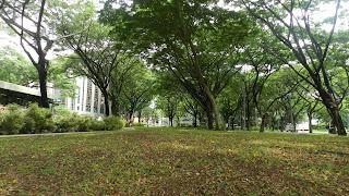 Dhoby Ghaut Park