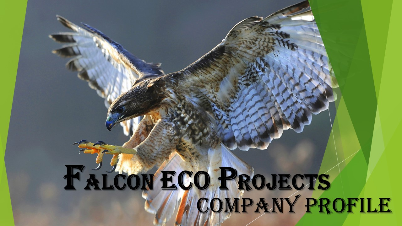 Falcon ECO Projects