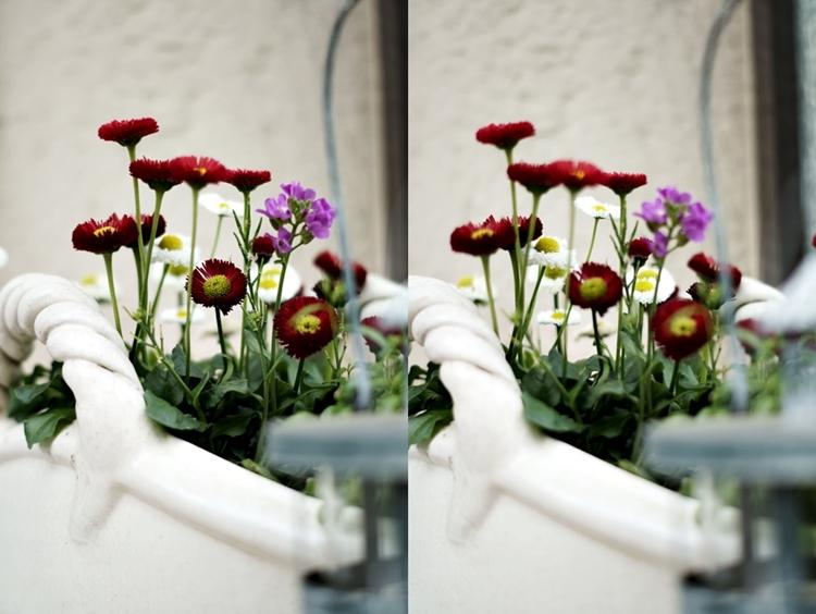 Collage eines Blumentopfs an der Haustür { by it's me! }