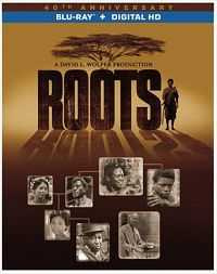 Roots Part 2 (2016) 300mb Hindi Dubbed Download Dual Audio BluRay