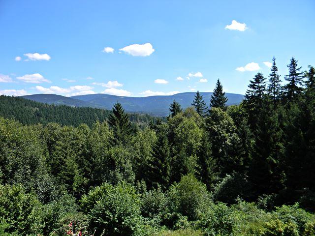 las, góry, Kotlina Kłodzka, Maria Śnieżna