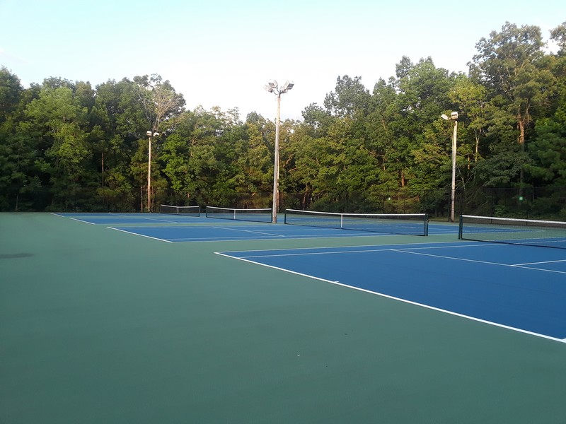 court de tennis dans la forêt