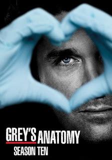 Anatomia de Grey Temporada 10 audio Español