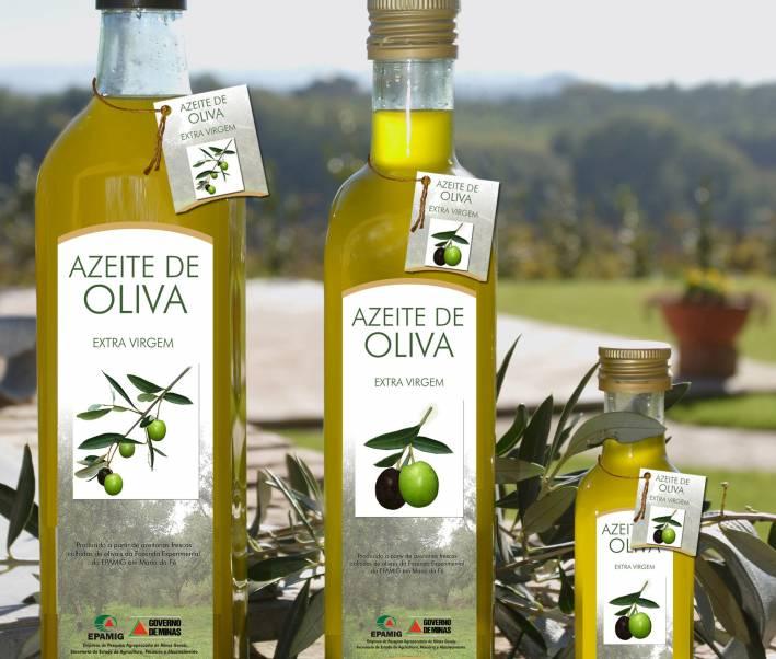 9ff08a9b4f9a3 ASSOOLIVE  Azeite extra-virgem é produzido em escala comercial no ...