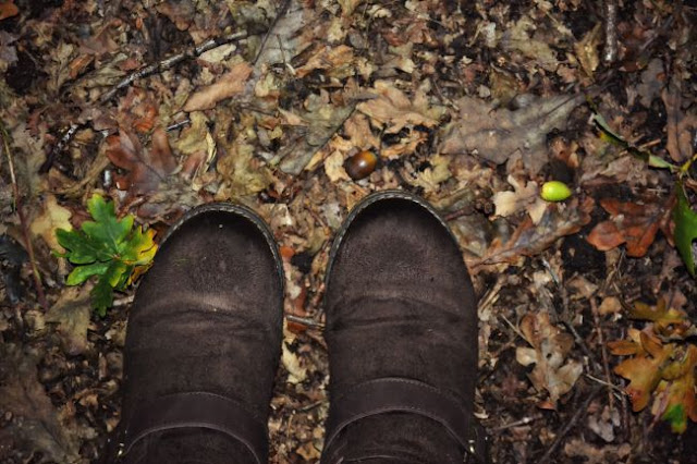 Autumn leaves and boots @ ups and downs, smiles and frowns.